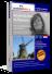 Niederländisch lernen, Niederländisch-Sprachkurs